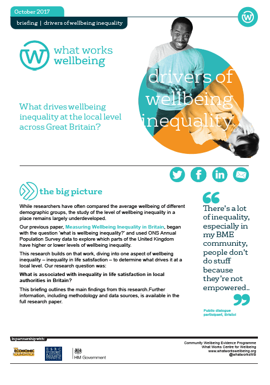 Drivers of Wellbeing Inequality
