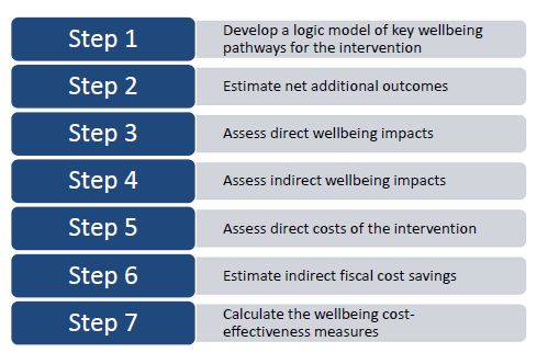 7 steps to carrying out a cost effectiveness analysis