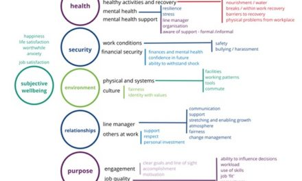 Developing an evidence-informed workplace wellbeing questionnaire