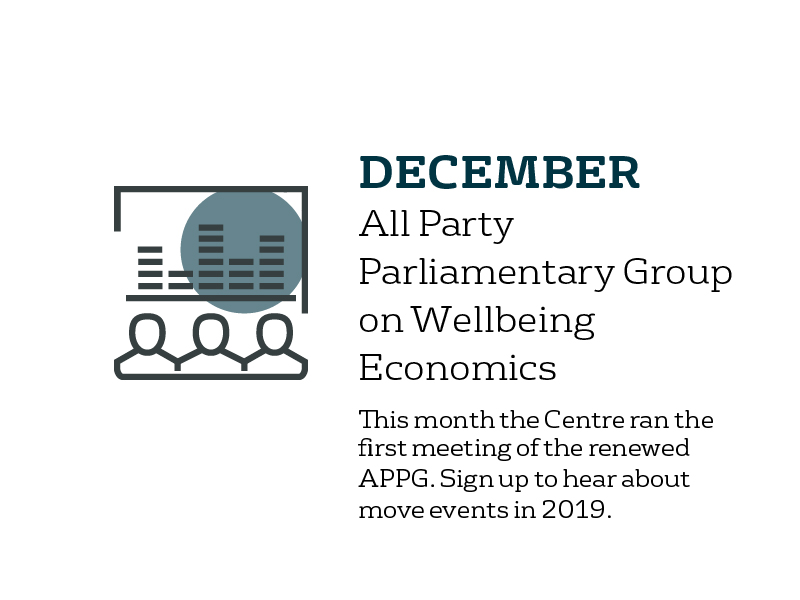 December - All Party Parliamentary Group on wellbeing economics: this month the Centre ran the first meeting of the renewed APPG. Sign up to find out about more events in 2019.